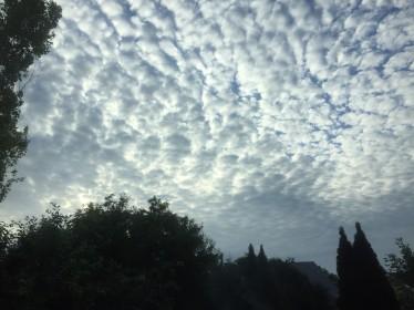 Cloud-6